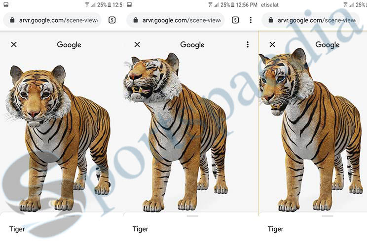 Tiger View In 3D Google AR - Tiger 3D View Camera | Tiger 3D View In Your Space